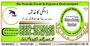 Dengue Spray Company